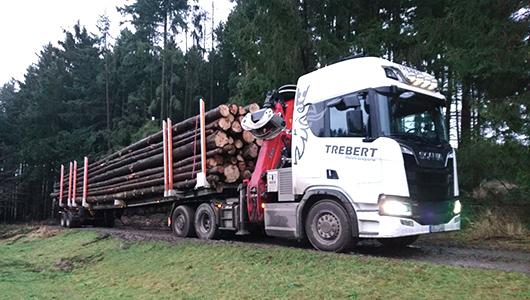 Holztransporte mit Säge und Kran