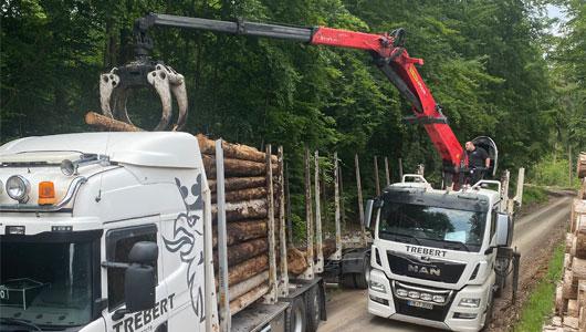 Holztransport mit Kran und Kranfahrzeug